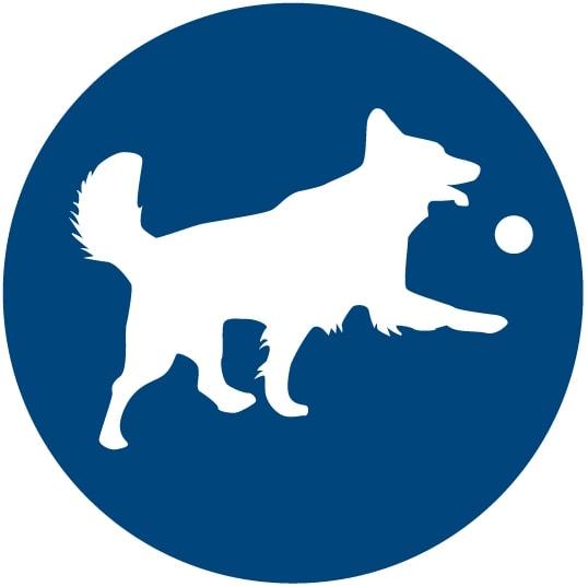 Perro jugando icono