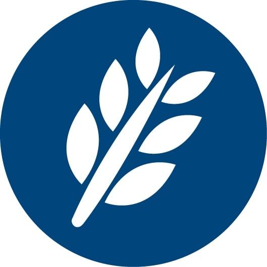 Icono de grano